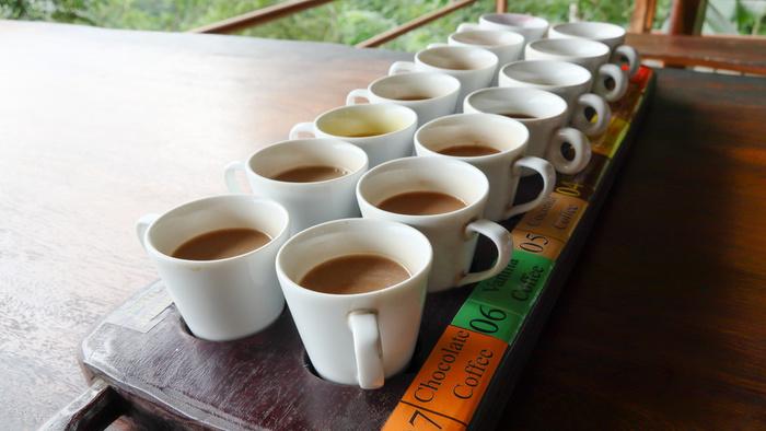 コーヒー 豆 おすすめ